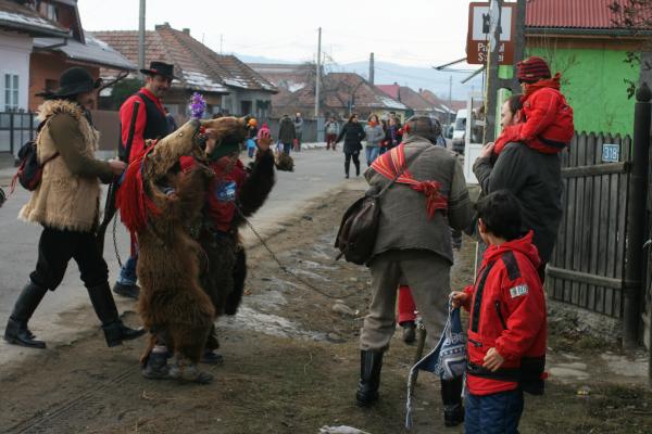 darmanesti2011 331