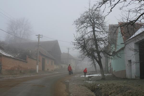 darmanesti2011 552
