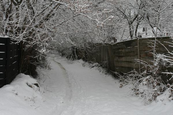 bikfalva2012jan 043
