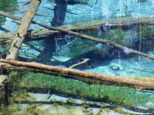 オホーツクエリア 神の子池