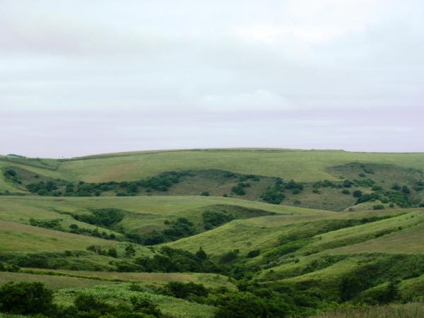 宗谷丘陵2