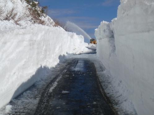 雄国林道の雪の回廊P4180086