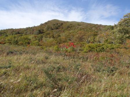 2012.10.101湿原より