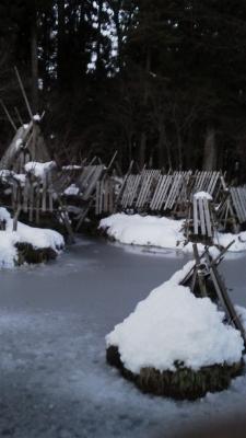 雪の心字池2012121316380000 (225x400)