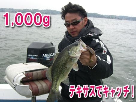 2011-06-01-1.jpg