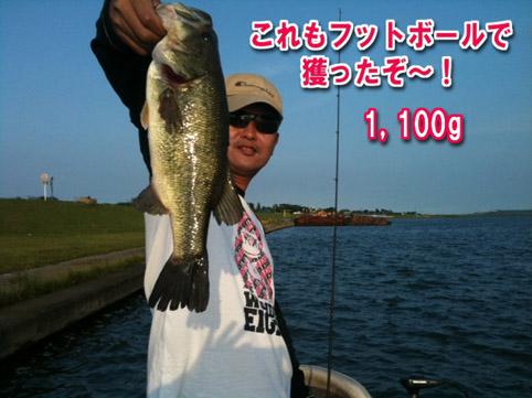 2011-06-09-1.jpg