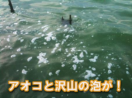 2011-06-29-2.jpg