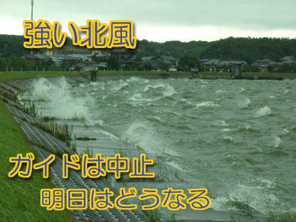 2011-07-23-1.jpg
