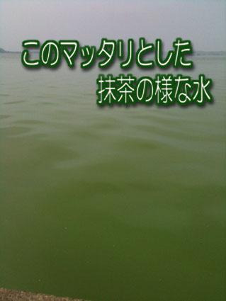 2011-07-29-2.jpg