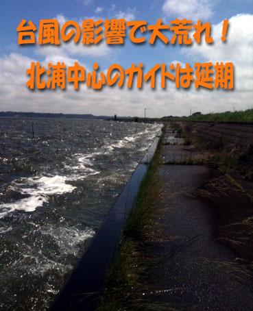 2011-08-30-1.jpg