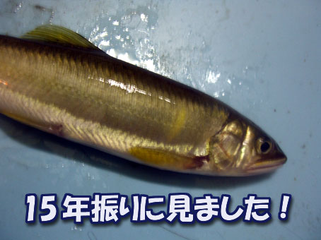 2011-08-31-1.jpg