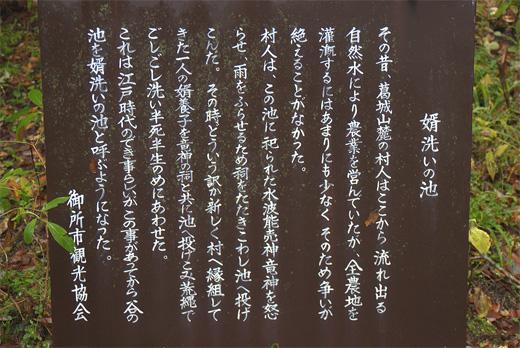 20111106-13.jpg