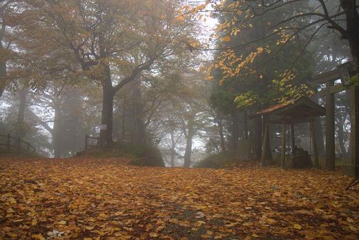 20111106-14.jpg