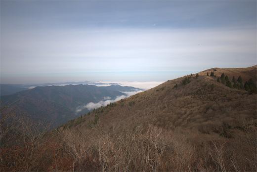 20111127-44.jpg
