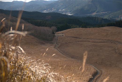 20111205-11.jpg