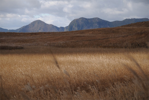 20111205-8.jpg