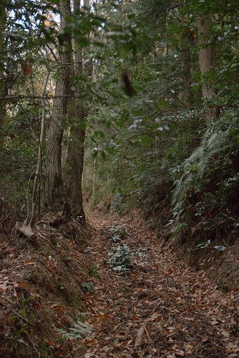20111218-4.jpg
