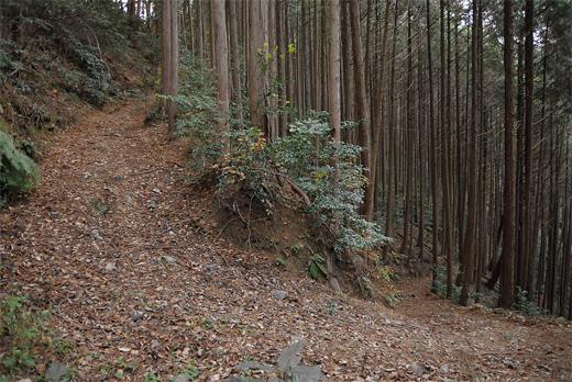 20111218-7.jpg