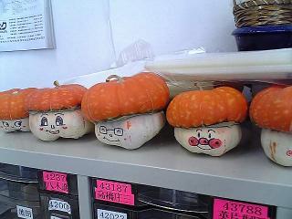 かぼちゃの島人