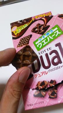dual.jpg