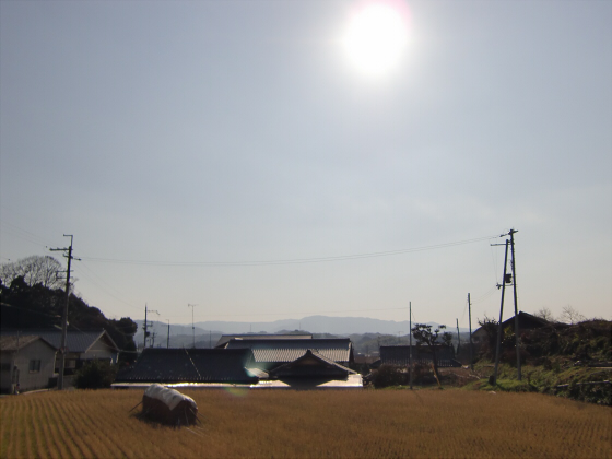 和歌山電鉄沿線近辺08