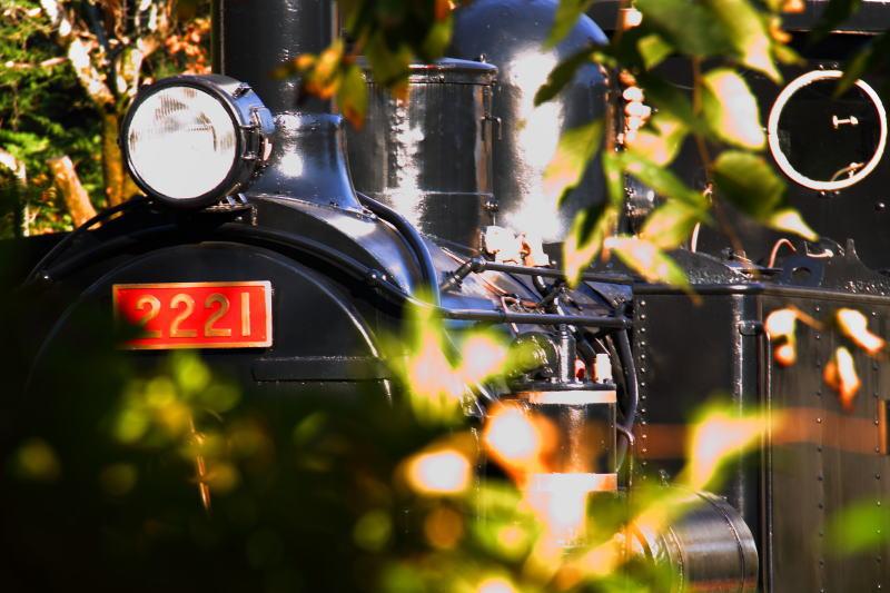 2010111002.jpg