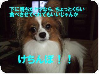 DSCF1429.jpg
