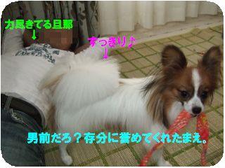 DSCF1441.jpg