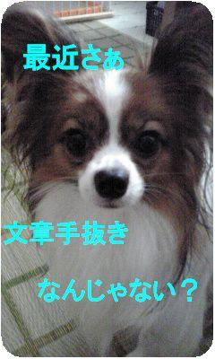 Image234.jpg