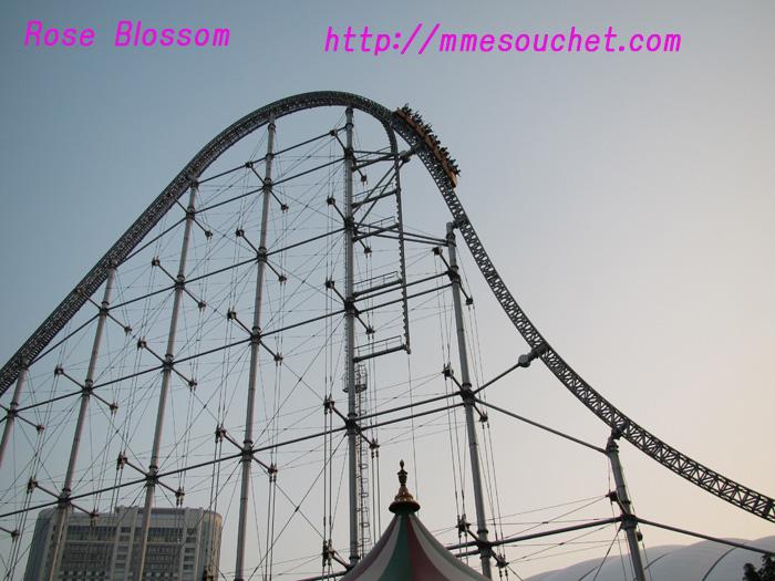 201010152.jpg