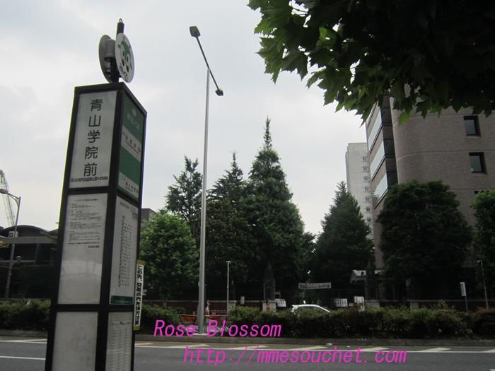 aogaku20100711.jpg