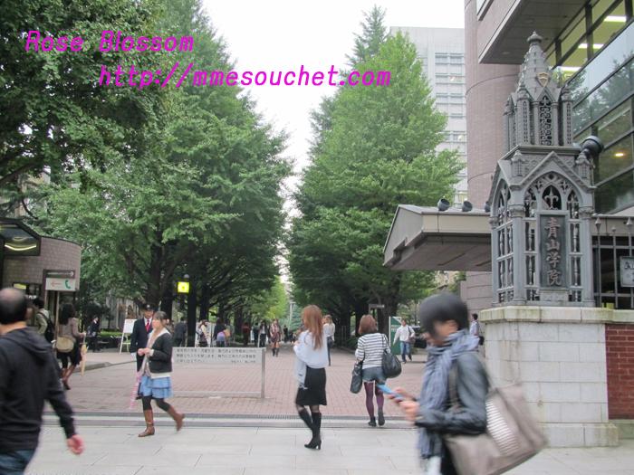 aogakuseimon20101025.jpg