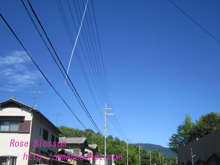hikoukigumo20100718.jpg