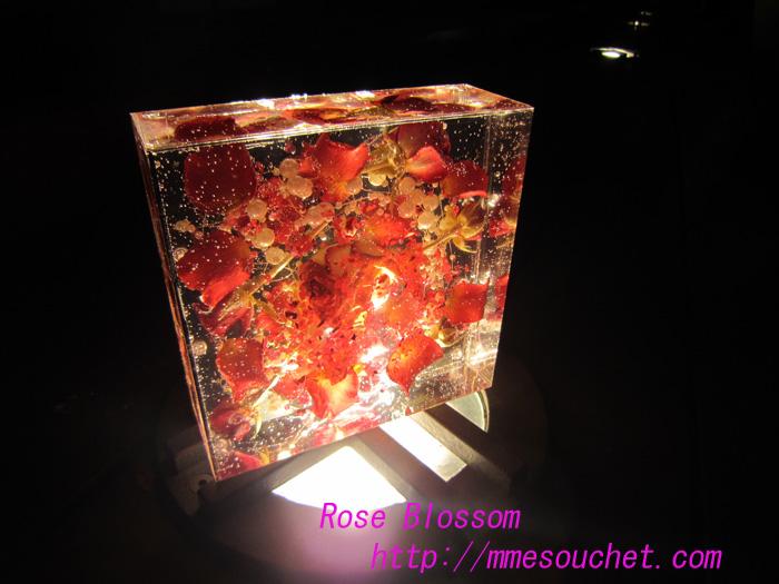 icebox120100726.jpg