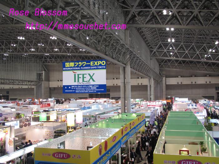 ifex20101028.jpg