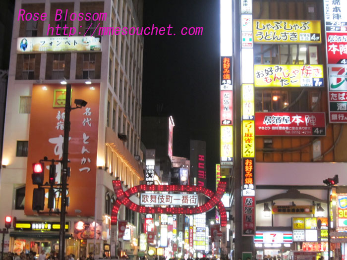 kabukicyo201006061.jpg