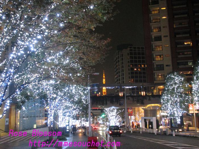 keyakizaka201011221.jpg