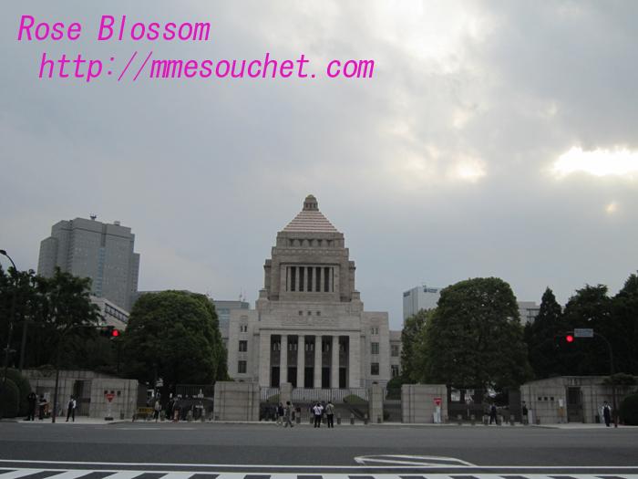 kokkai20100528.jpg