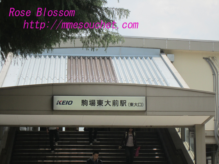 komabaeki20100531.jpg