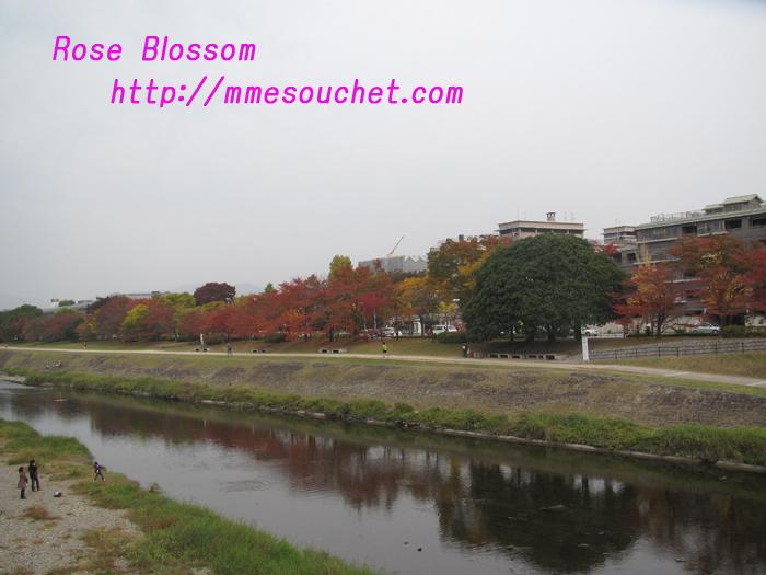 kouyou20101117.jpg