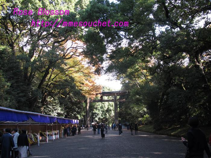 meijingu20101123.jpg
