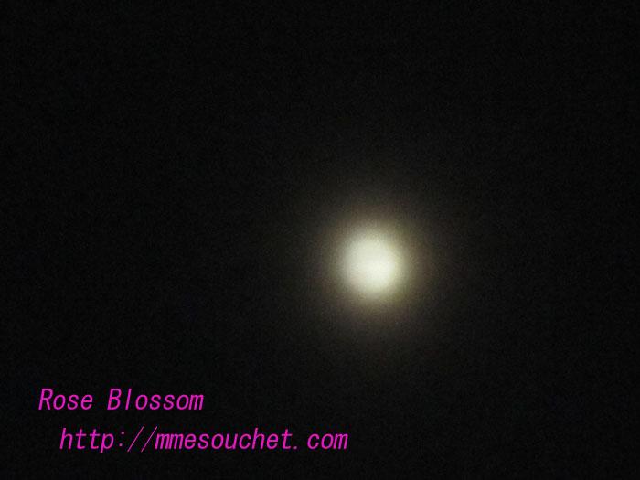 moon20100625.jpg