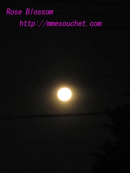 moon20100724.jpg