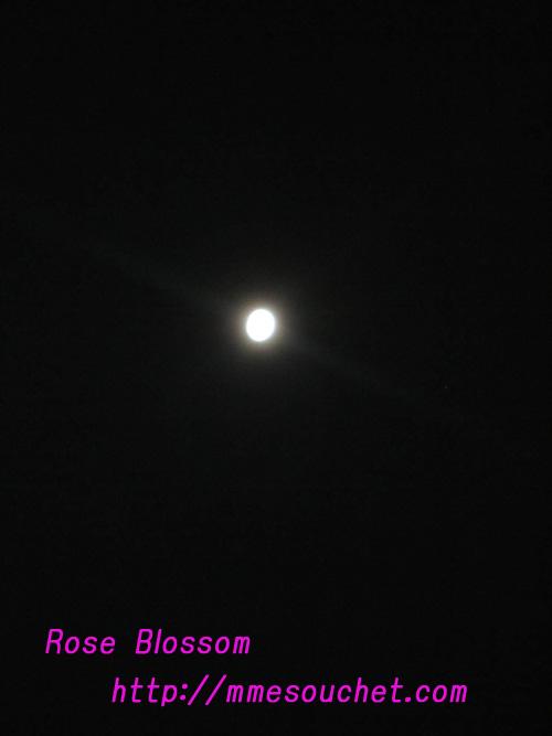 moon20100922.jpg