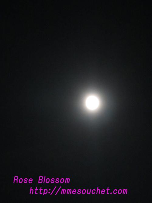 moon20101023.jpg