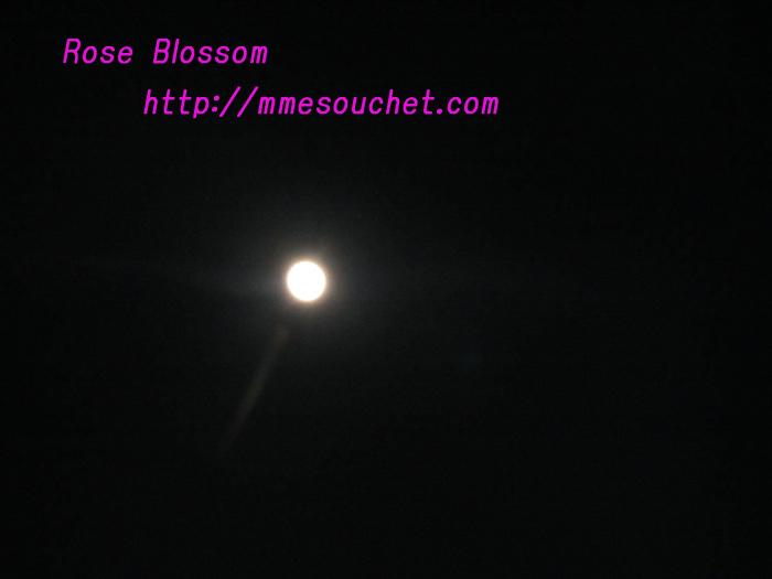 moon20101119.jpg
