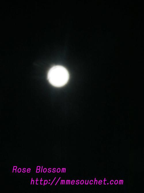 moon201011191.jpg