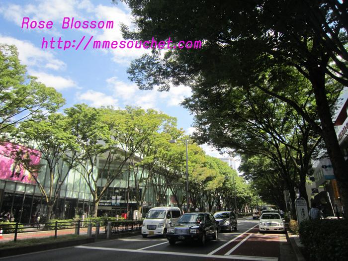 omotesando20100925.jpg