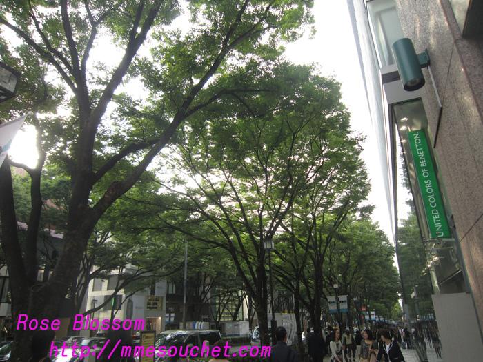 omotesando20100928.jpg