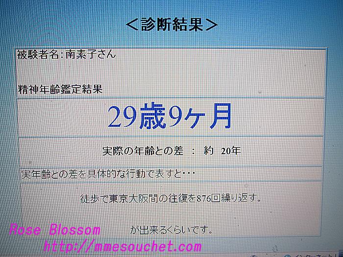 result20101017.jpg